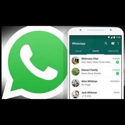 WhatsApp eliminati? Da adesso si possono recuperare e leggere, in questo modo