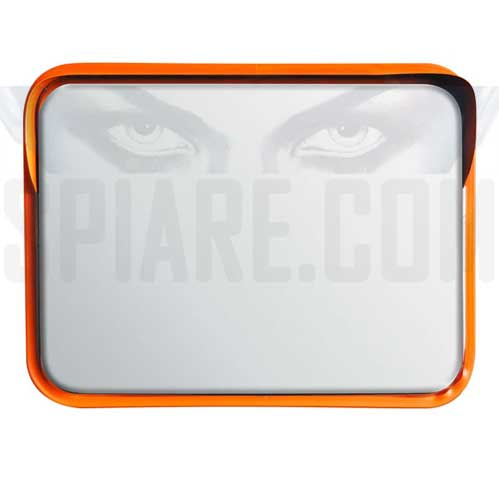 Specchio di sicurezza parabolico in acciaio inox