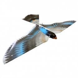 Drone uguale ad un aquila abbattuto in Somalia